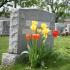 Glenville Funeral Home