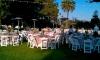 Wedding reception with 60