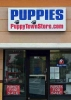 Puppy town located in mill creek mall, kissimmee, fl