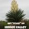 Get stuck on hidden valley!
