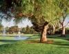 Photo 6 sports - St. Mark Golf Club