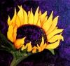 Suns up   6 x 6 acrylic on panel by katherine mcdermott