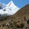 The most beautiful mountain in the world alpamayo - trekking 13 days cordillera blanca