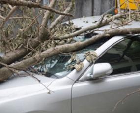 Car Insurance Companies Aiken Sc