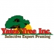 Yates Tree Inc - San Antonio, Texas - Picture 1