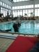 Oceanblue Divers