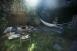 The magical backyard