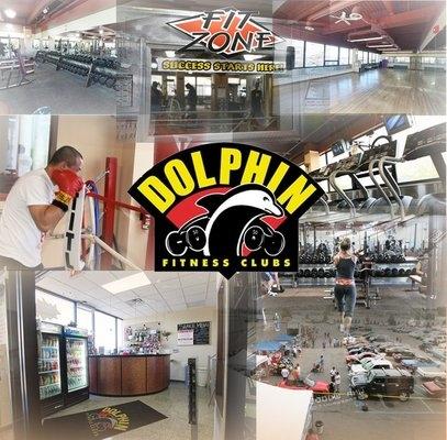 Dolphin Fitness Club - New York, New York
