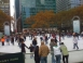 The Pond, currently in Bryant Park for the winter