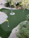 Synlawn - Scottsdale, Arizona - Picture 9