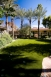 Synlawn - Scottsdale, Arizona - Picture 4