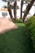 Synlawn - Scottsdale, Arizona - Picture 2