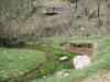 Photo 11  in Wyoming - Rancha Restoration Foundation