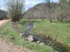 Photo 12  in Wyoming - Rancha Restoration Foundation