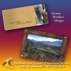 Present a professional and memorable presence to potential customers with dynamic and attractive brochures.