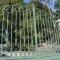 Us thousand oaks gates - photo 12