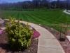 Photo 6  in West Virginia - Cornerstone Lawn Services llc