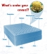 Not only dust mites live in your mattress, but bacteria, mold and other harmful microorganisms